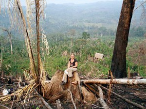 One of the sampling sites of virgin forest that was recently slashed and burnt.