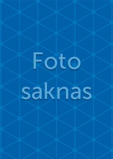 foto-saknas-lagerbladet